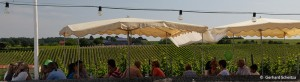 events_evinum_weinfest2